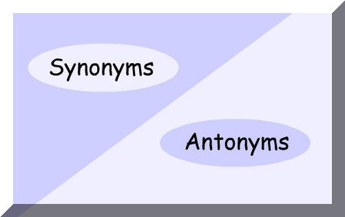 How to learn synonyms and antonyms for ssc