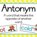 Antonyms online test