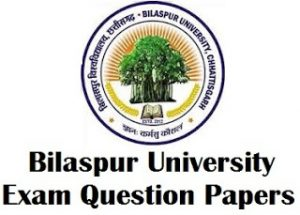 bilaspur university previous year question papers